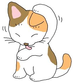 猫が体を拭く