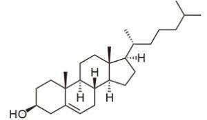 コレステロール構造