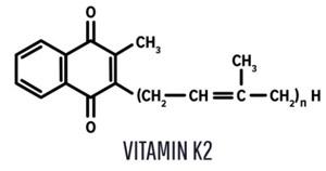 ビタミンK2